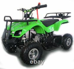 New In Stock 50cc Kids Mini Quad Bike Motorcycle Disk Brakes Lights & Auto Gears
